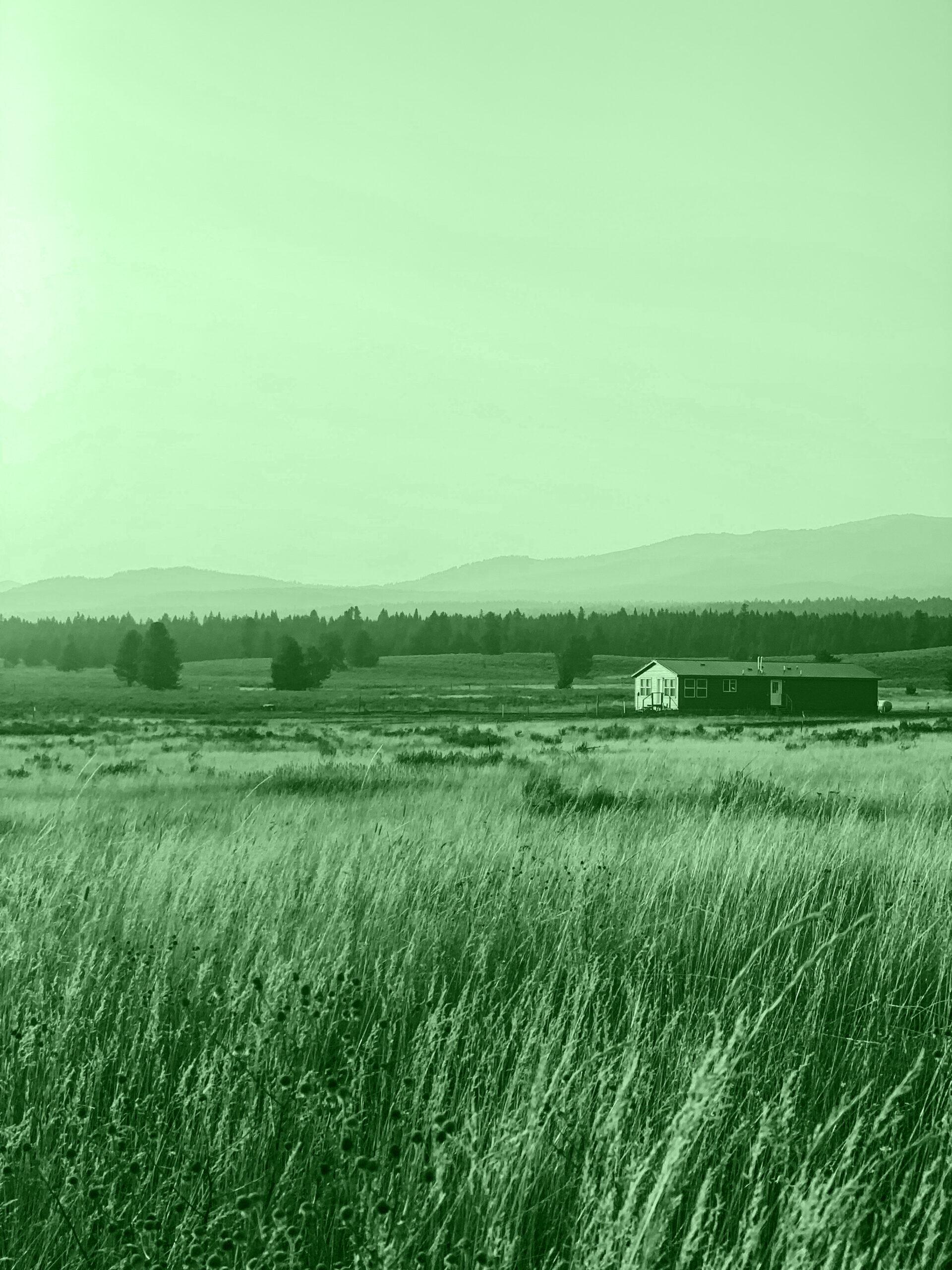 Por qué buscas paisajes bonitos_